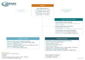 Organigramme d'Arènes (janv 2020)